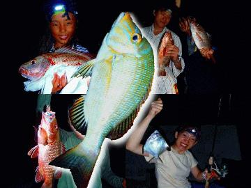 西表島の夜釣りで爆釣?!