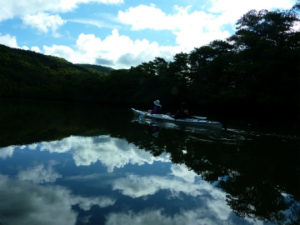 静かで美しい仲良川中流域