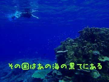 西表島ロングシーカヤックツアー