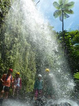 美しい光の中、西表島の秘密の滝へ。